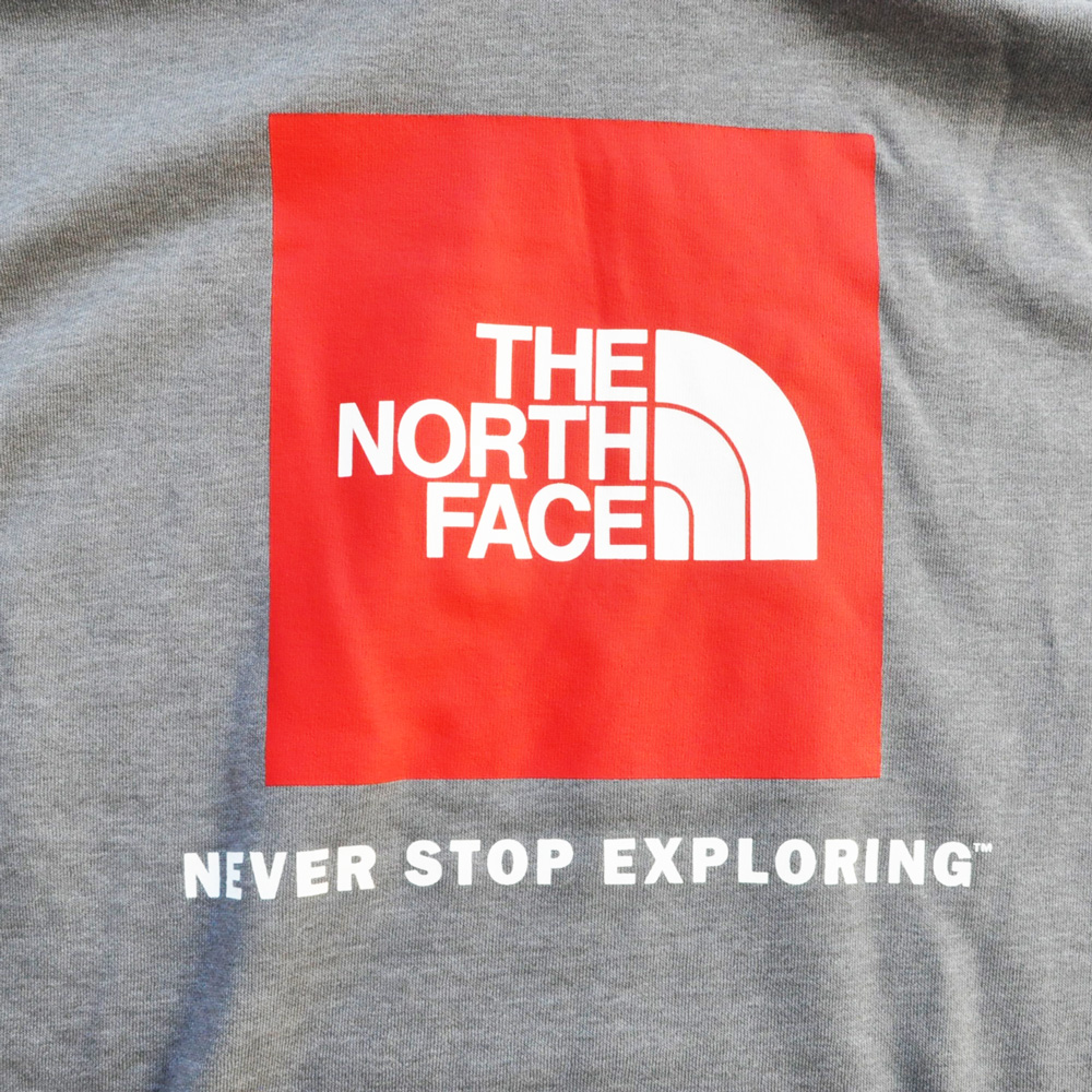 THE NORTH FACE/ザノースフェイス NEVER STOP EXPLORING パーカー グレー-3
