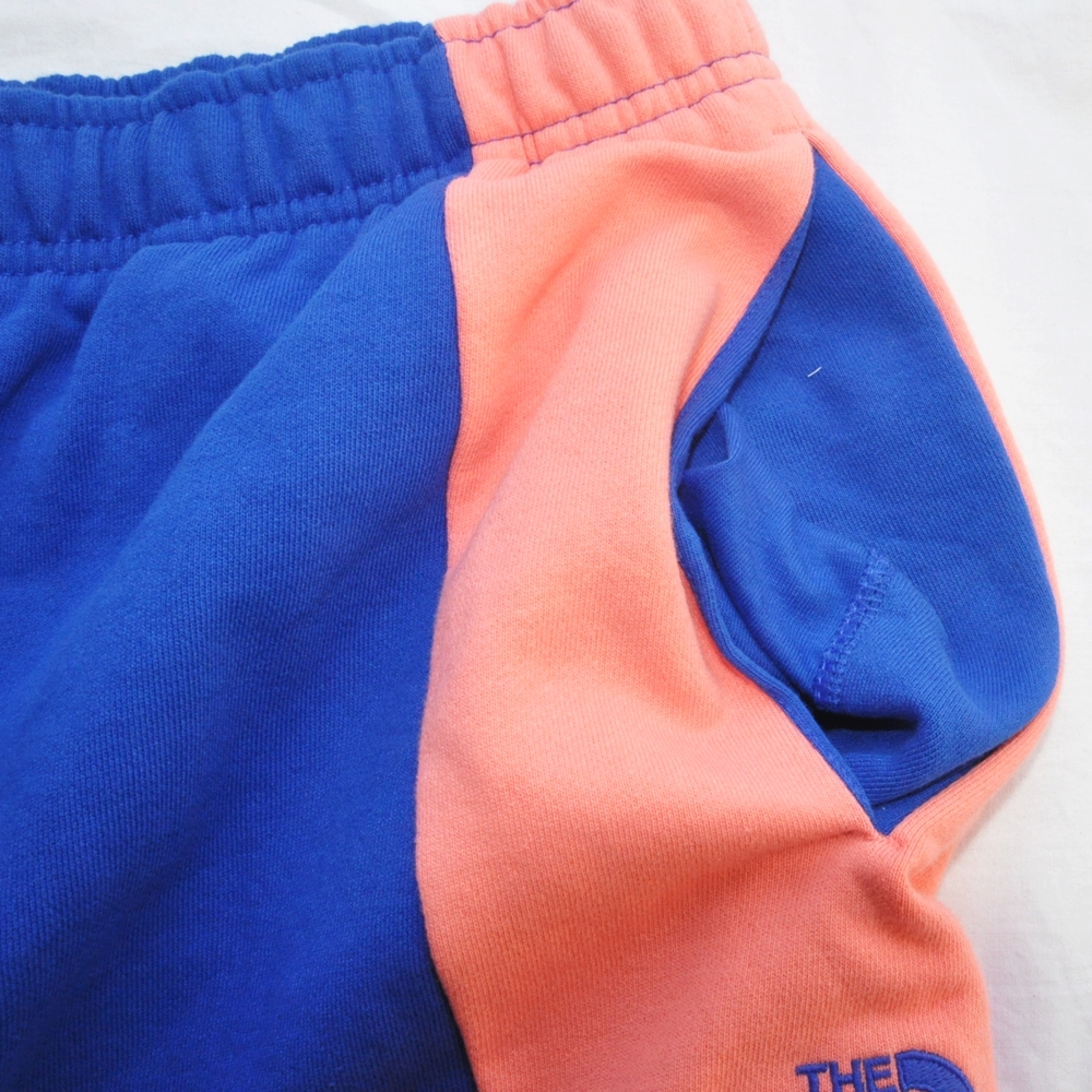 THE NORTH FACE/ザノースフェイス EXTREME BLOCK SHORTS PINK/BLUE BIG SIZE-5